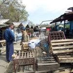 Kleidermarkt in Almaty