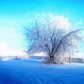 Зима в Восточном Казахстане Зима в Восточном Казахстане